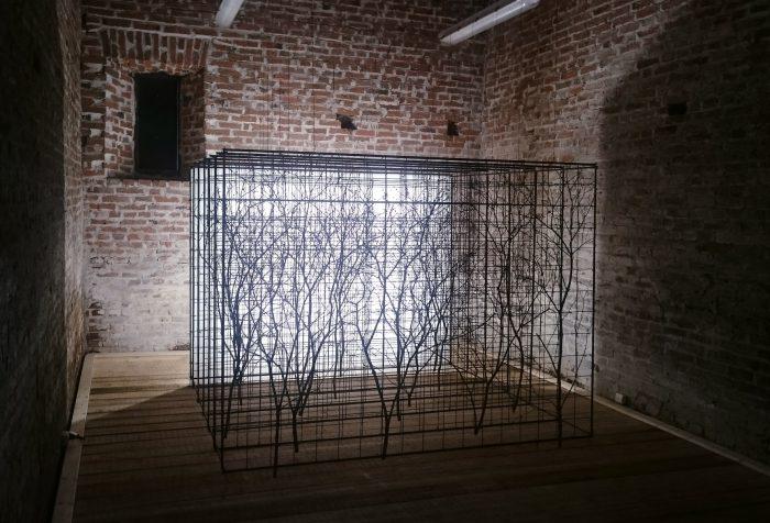 Grid Garden, 2017, installation, 2m x 2,6m x 2,4m