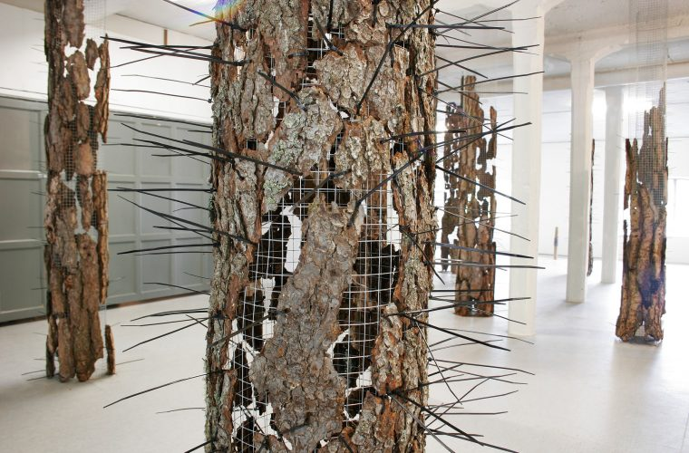 Forest Composition, 2009