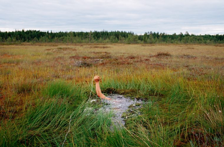 Self-Portrait on the Swamp, 2002